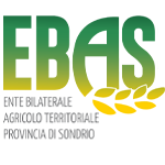 Ebas Sondrio